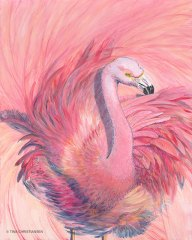 Flamingo Shake Your Tail Feathers